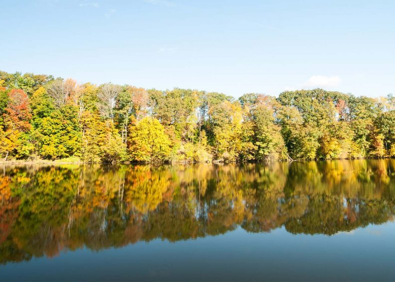 The Connecticut river bank with fall folliage
