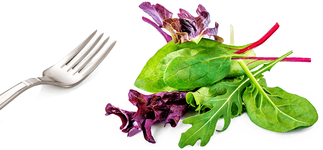 fork and salad greens